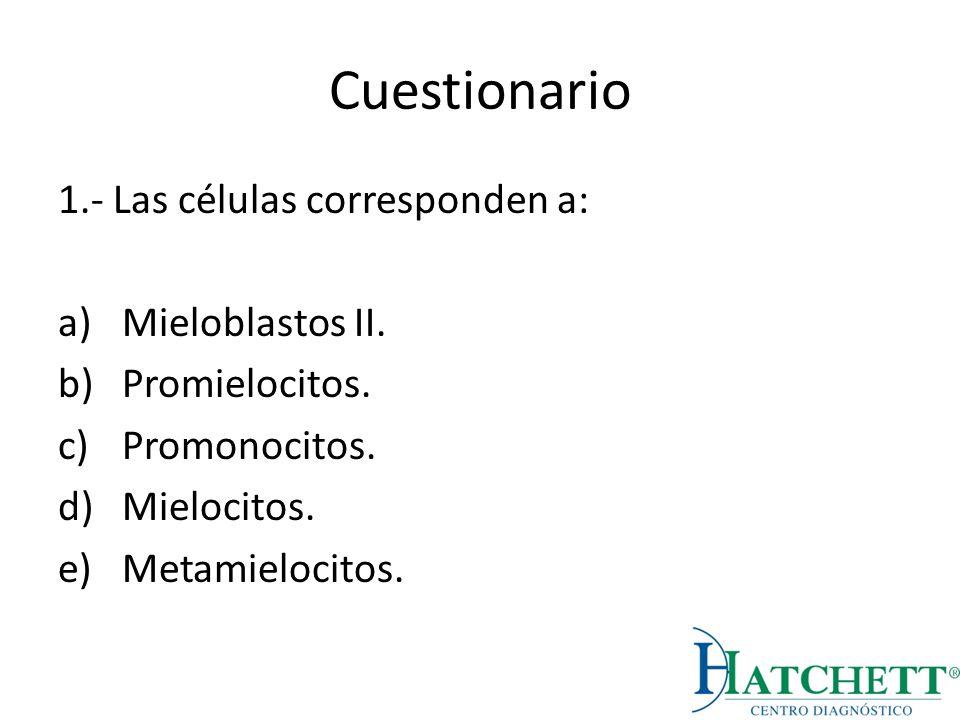 Cuestionario 1.- Las células corresponden a: a)Mieloblastos II. b)Promielocitos. c)Promonocitos. d)Mielocitos. e)Metamielocitos.