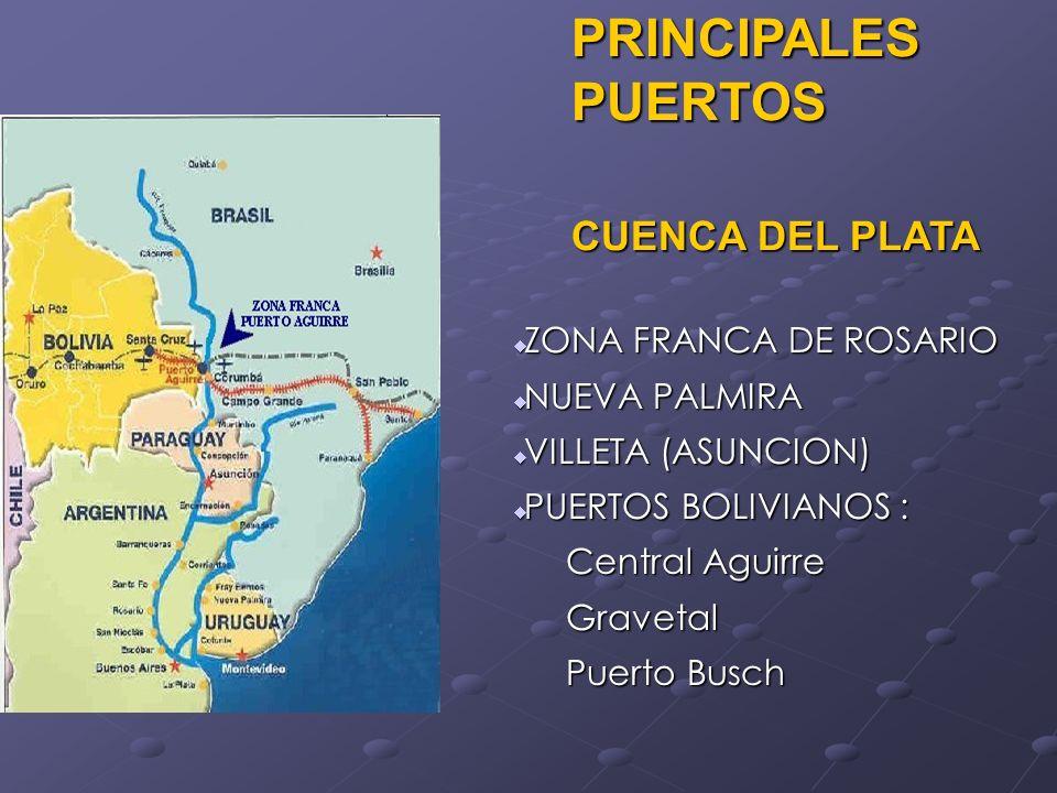 PRINCIPALES PUERTOS CUENCA DEL PLATA PRINCIPALES PUERTOS CUENCA DEL PLATA ZONA FRANCA DE ROSARIO ZONA FRANCA DE ROSARIO NUEVA PALMIRA NUEVA PALMIRA VI