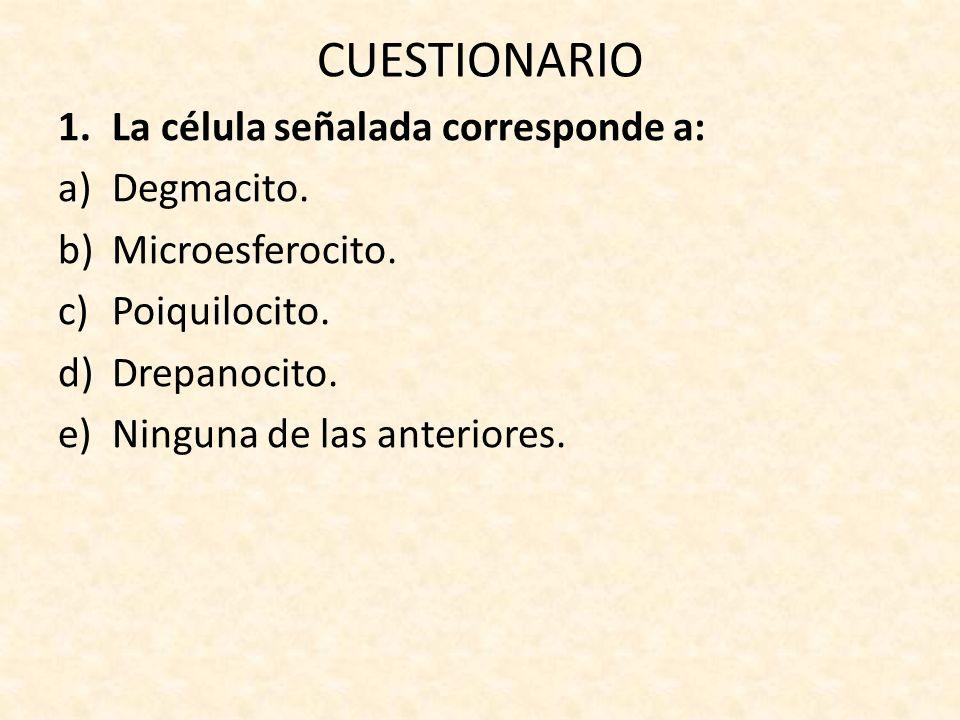 CUESTIONARIO 1.La célula señalada corresponde a: a)Degmacito.