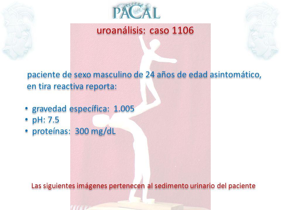 uroanálisis: caso 1106 paciente de sexo masculino de 24 años de edad asintomático, en tira reactiva reporta: gravedad específica: 1.005 pH: 7.5 proteí