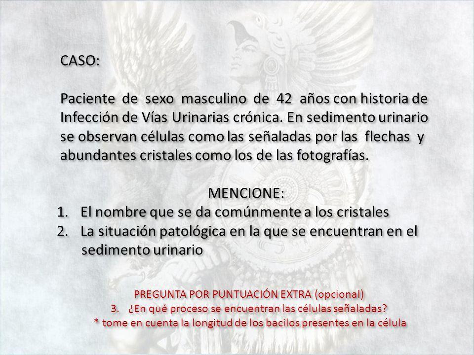 CASO: Paciente de sexo masculino de 42 años con historia de Infección de Vías Urinarias crónica. En sedimento urinario se observan células como las se