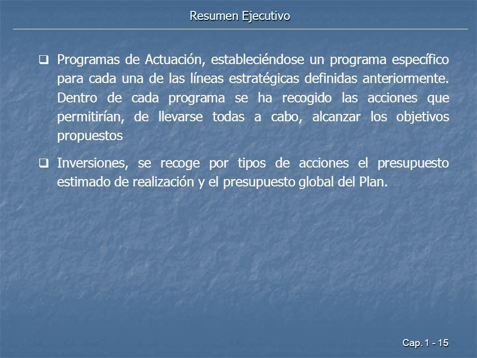 Cap. 1 - 15 Resumen Ejecutivo Programas de Actuación, estableciéndose un programa específico para cada una de las líneas estratégicas definidas anteri