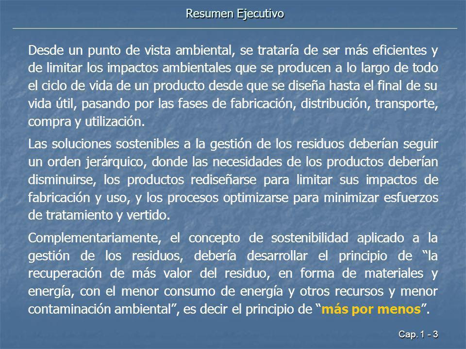 Cap. 1 - 3 Resumen Ejecutivo Desde un punto de vista ambiental, se trataría de ser más eficientes y de limitar los impactos ambientales que se produce