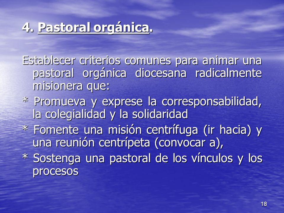 18 4. Pastoral orgánica. Establecer criterios comunes para animar una pastoral orgánica diocesana radicalmente misionera que: * Promueva y exprese la