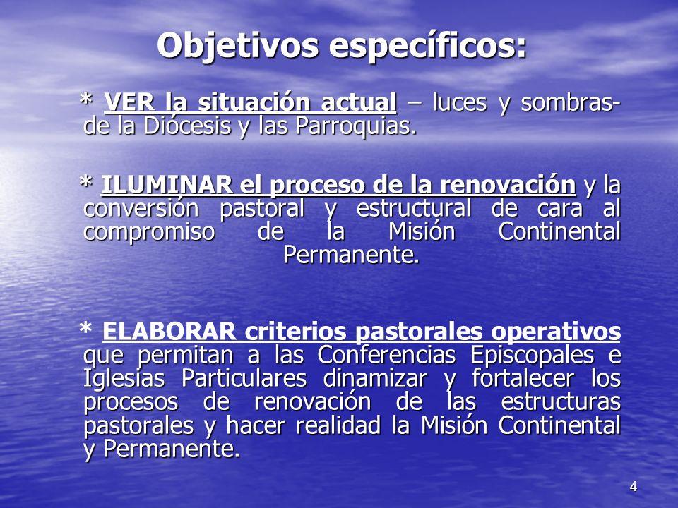 4 Objetivos específicos: * VER la situación actual – luces y sombras- de la Diócesis y las Parroquias. * ILUMINAR el proceso de la renovación y la con