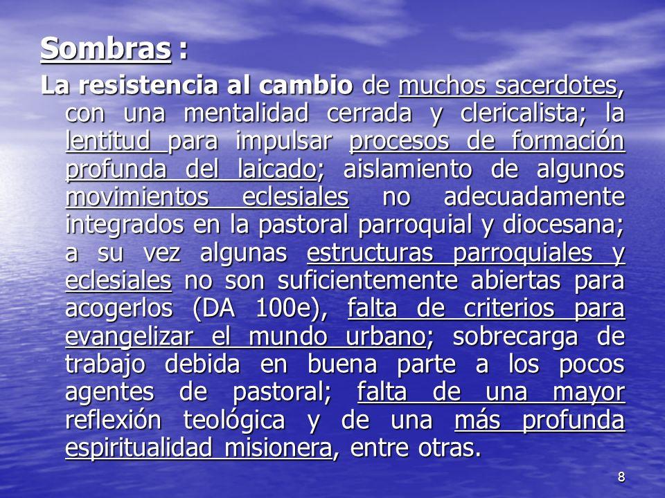 8 Sombras : La resistencia al cambio de muchos sacerdotes, con una mentalidad cerrada y clericalista; la lentitud para impulsar procesos de formación