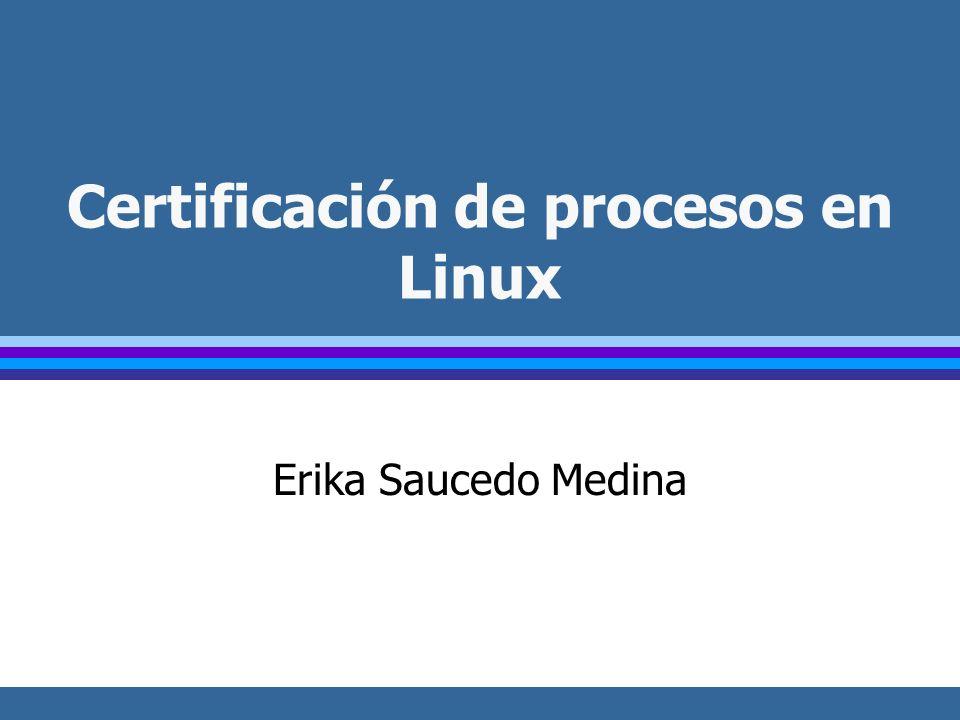 Certificación de procesos en Linux Erika Saucedo Medina