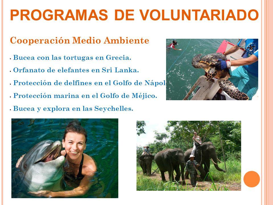 Cooperación Medio Ambiente Bucea con las tortugas en Grecia. Orfanato de elefantes en Sri Lanka. Protección de delfines en el Golfo de Nápoles. Protec