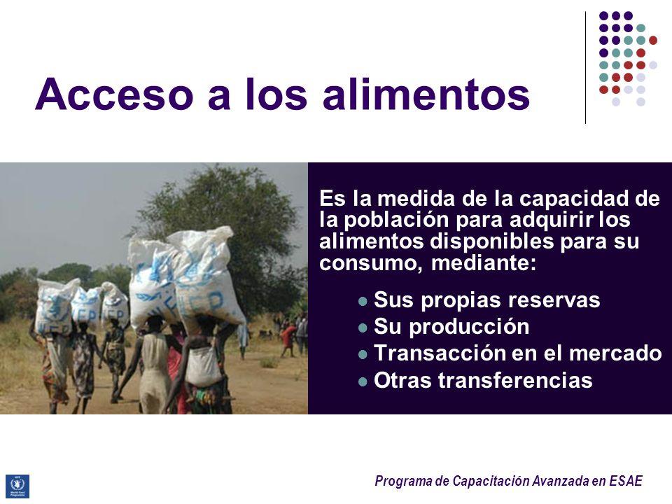 Programa de Capacitación Avanzada en ESAE Acceso a los alimentos Es la medida de la capacidad de la población para adquirir los alimentos disponibles