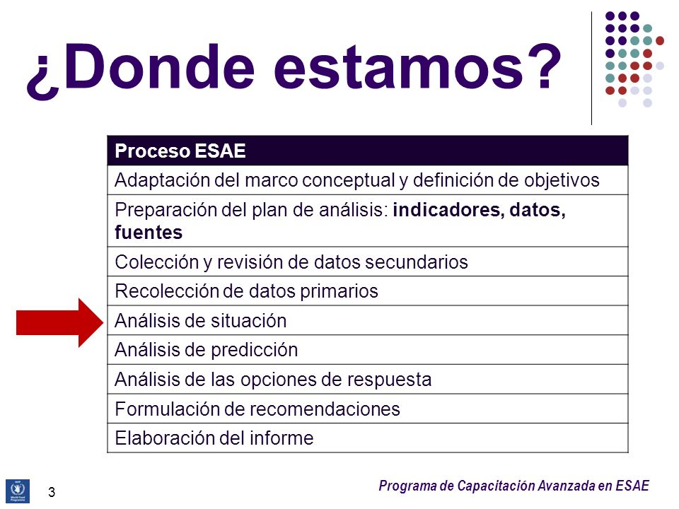 Programa de Capacitación Avanzada en ESAE SA del hogar: se estima combinando el consumo y el acceso a los alimentos: = Consumo de alimentos ¿Pobre?¿Límite?¿Aceptable.