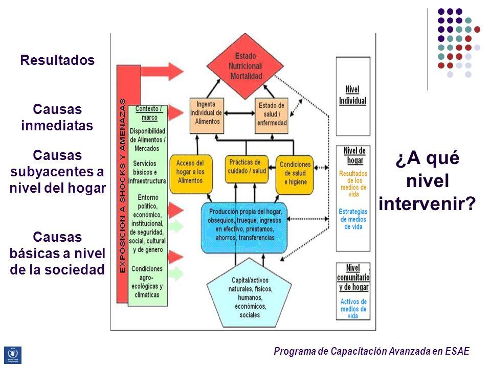 Programa de Capacitación Avanzada en ESAE Resultados Causas inmediatas Causas subyacentes a nivel del hogar Causas básicas a nivel de la sociedad ¿A q