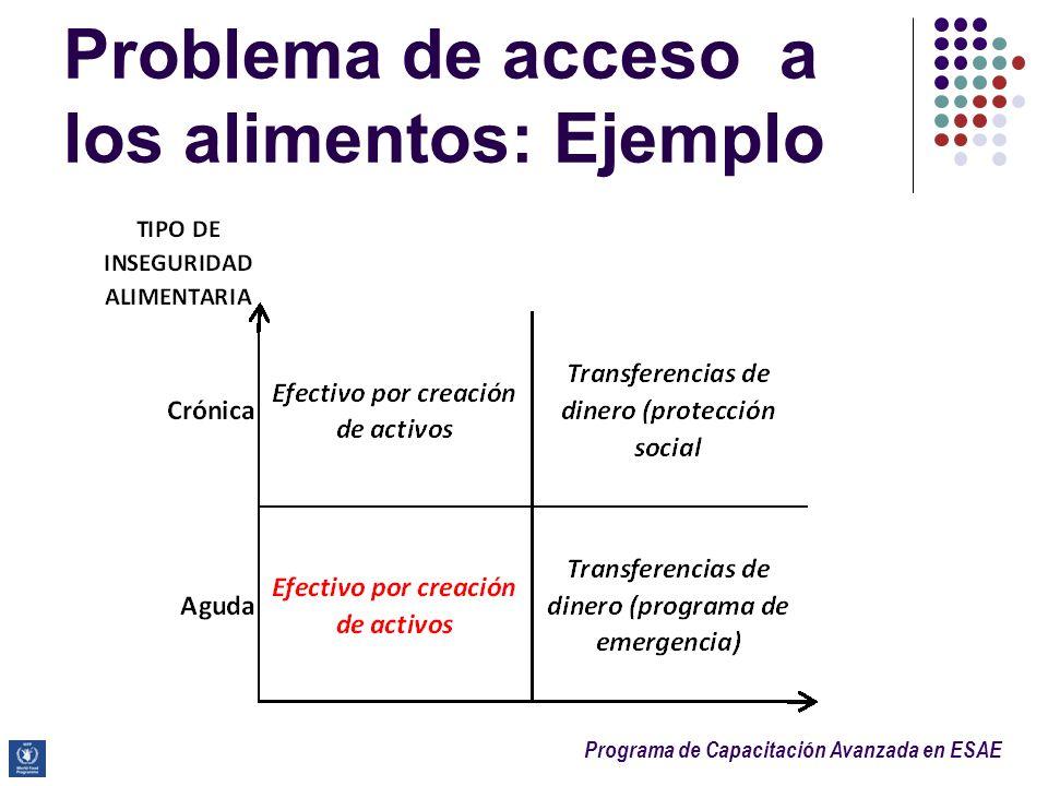 Programa de Capacitación Avanzada en ESAE Problema de acceso a los alimentos: Ejemplo
