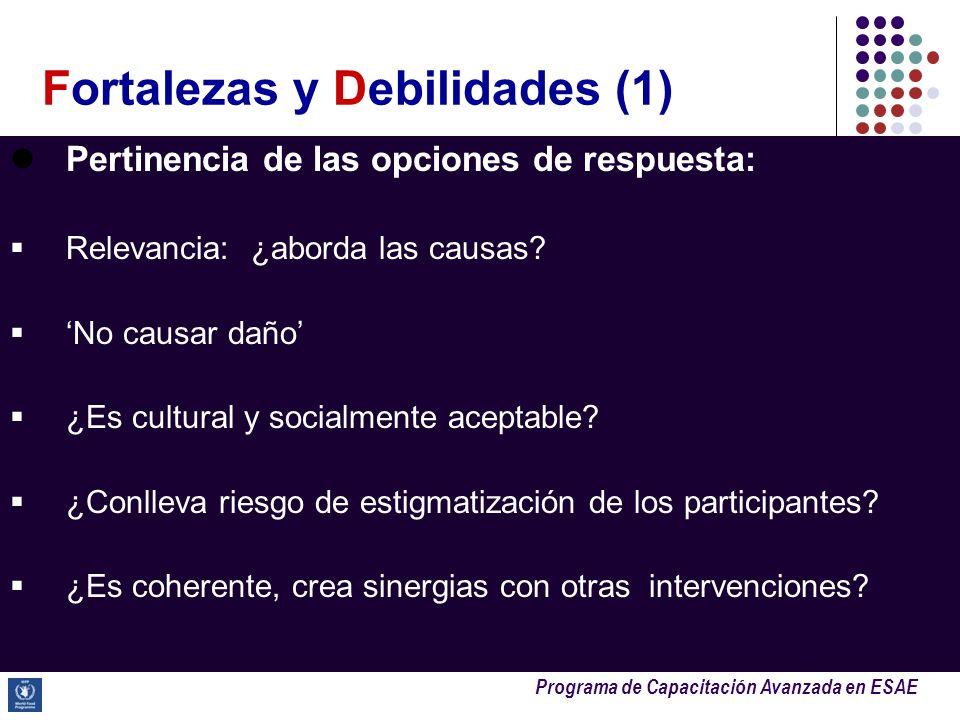 Programa de Capacitación Avanzada en ESAE Pertinencia de las opciones de respuesta: Relevancia: ¿aborda las causas? No causar daño ¿Es cultural y soci
