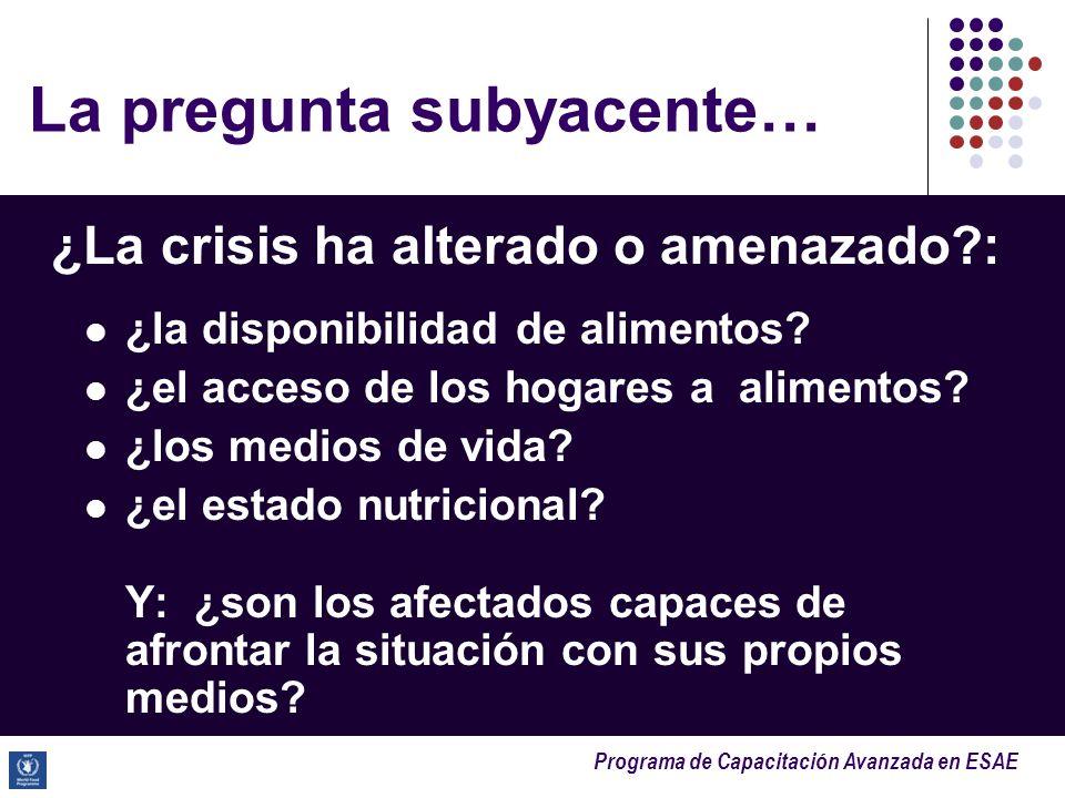 Programa de Capacitación Avanzada en ESAE La pregunta subyacente… ¿La crisis ha alterado o amenazado?: ¿la disponibilidad de alimentos? ¿el acceso de