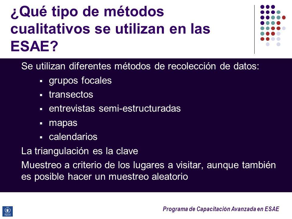 Programa de Capacitación Avanzada en ESAE ¿Qué tipo de métodos cualitativos se utilizan en las ESAE? Se utilizan diferentes métodos de recolección de