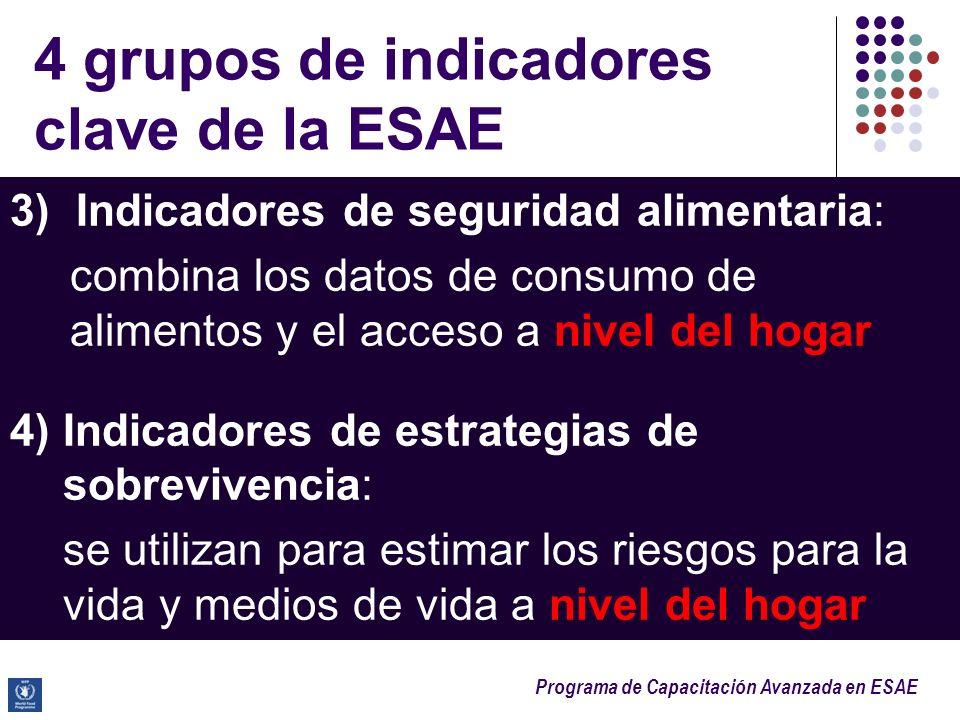 Programa de Capacitación Avanzada en ESAE 3) Indicadores de seguridad alimentaria: combina los datos de consumo de alimentos y el acceso a nivel del h