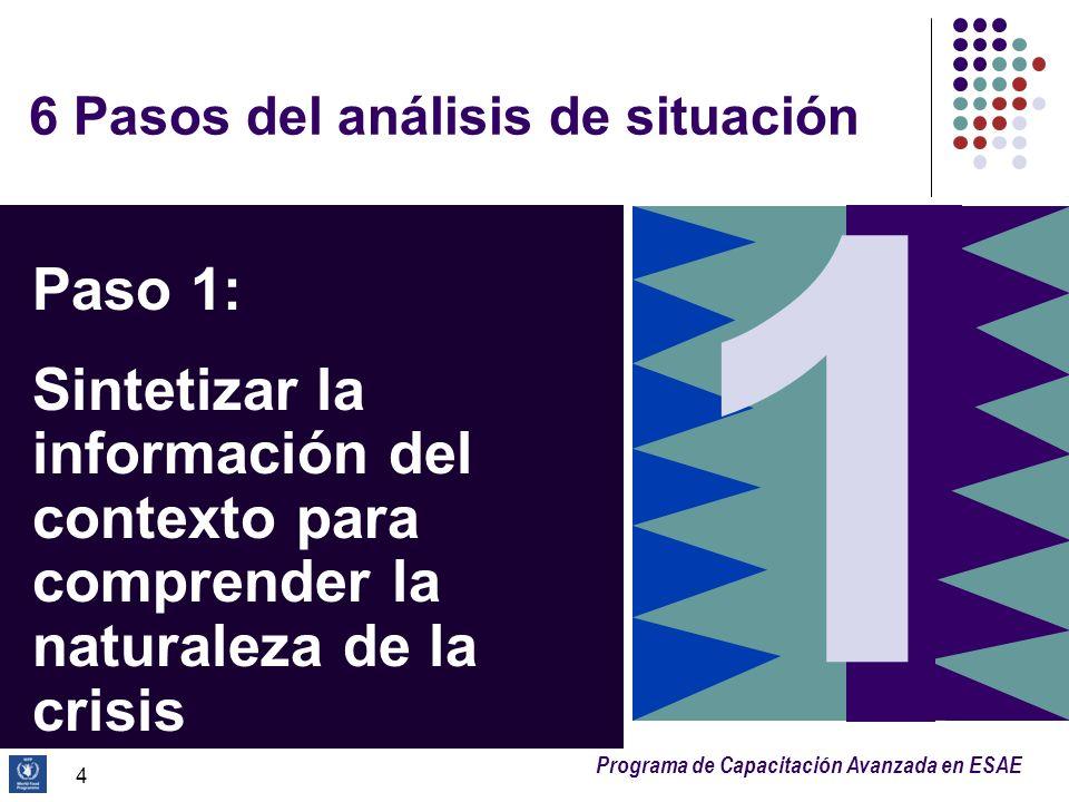 Programa de Capacitación Avanzada en ESAE 4 6 Pasos del análisis de situación Paso 1: Sintetizar la información del contexto para comprender la natura
