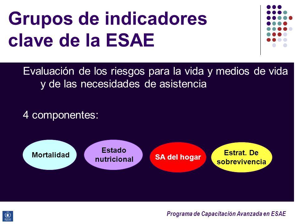 Programa de Capacitación Avanzada en ESAE 4 grupos de indicadores clave de la ESAE 1) Tasas de mortalidad: un indicador de riesgos potenciales para la vida a nivel poblacional 2)Indicadores nutricionales: utilizados para estimar los riesgos para la vida a nivel individual