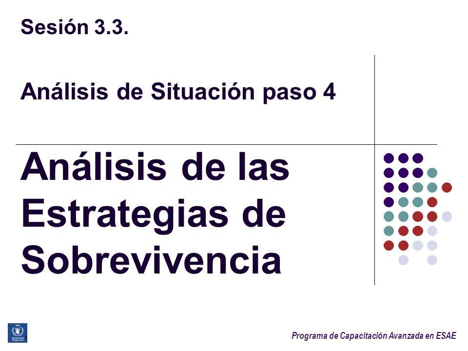 Programa de Capacitación Avanzada en ESAE Sesión 3.3. Análisis de Situación paso 4 Análisis de las Estrategias de Sobrevivencia 1