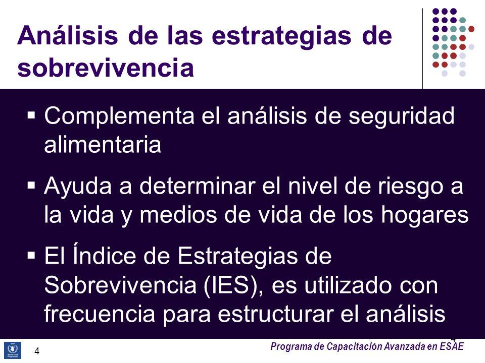 Programa de Capacitación Avanzada en ESAE 4 Análisis de las estrategias de sobrevivencia Complementa el análisis de seguridad alimentaria Ayuda a dete
