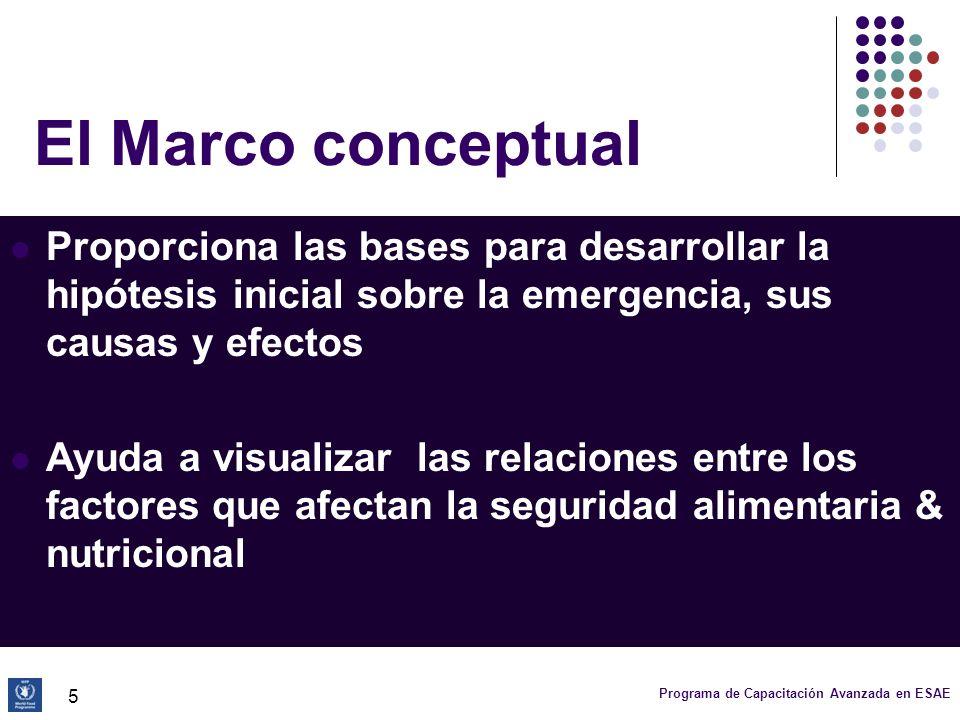 Programa de Capacitación Avanzada en ESAE 16 Marco conceptual: niveles de análisis (1) Causas básicas: Factores estructurales que establecen el contexto en el que hay inseguridad alimentaria y desnutrición