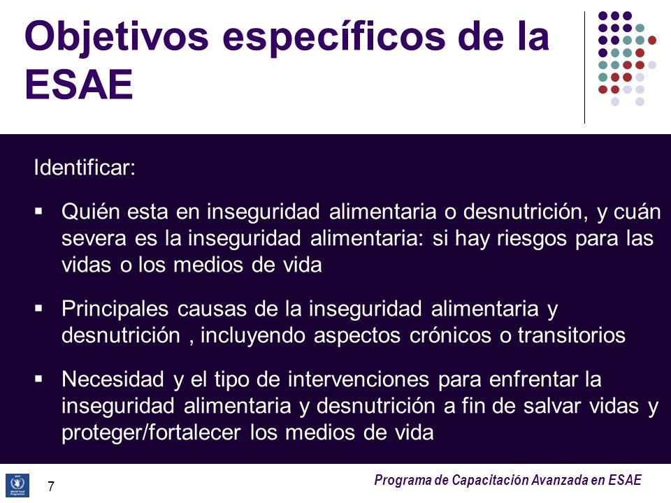 Programa de Capacitación Avanzada en ESAE 18 Marco conceptual: niveles de análisis (3) Causas inmediatas: factores que conducen directamente a la desnutrición y mortalidad