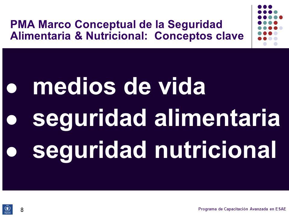 Programa de Capacitación Avanzada en ESAE 19 Marco conceptual: niveles de análisis (4) Resultados: Desnutrición y mortalidad ocasionada por no abordar los problemas en los otros niveles