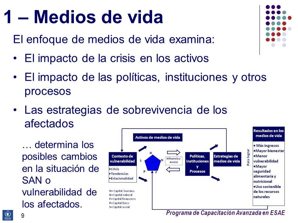Programa de Capacitación Avanzada en ESAE 20 Adaptación del marco conceptual ¿Por qué.