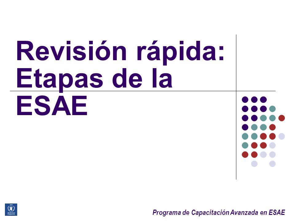 Programa de Capacitación Avanzada en ESAE Agenda Marco Conceptual, objetivos y tipos de ESAE Variables, indicadores y fuentes de información Análisis