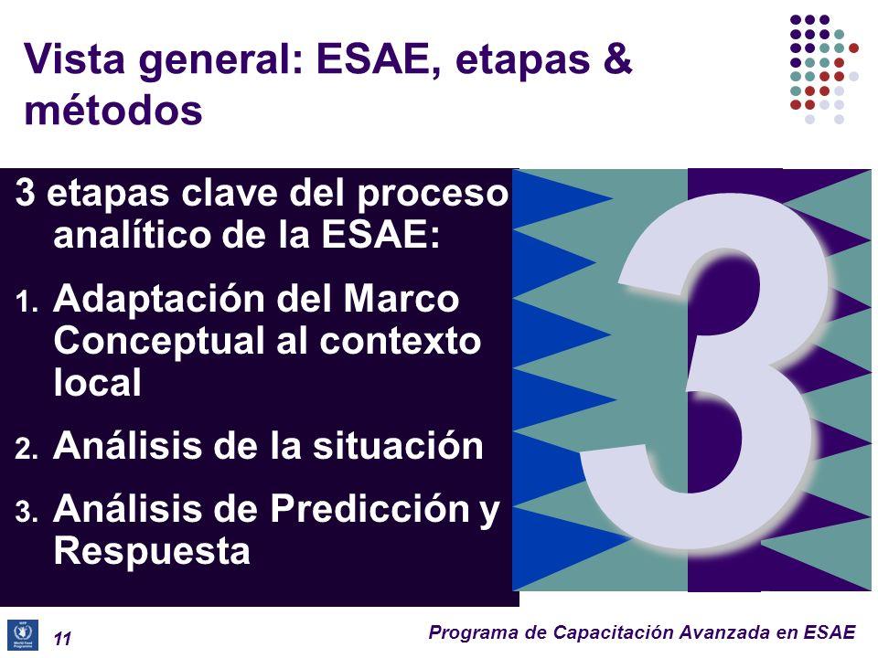 Programa de Capacitación Avanzada en ESAE Revisión rápida: Etapas de la ESAE