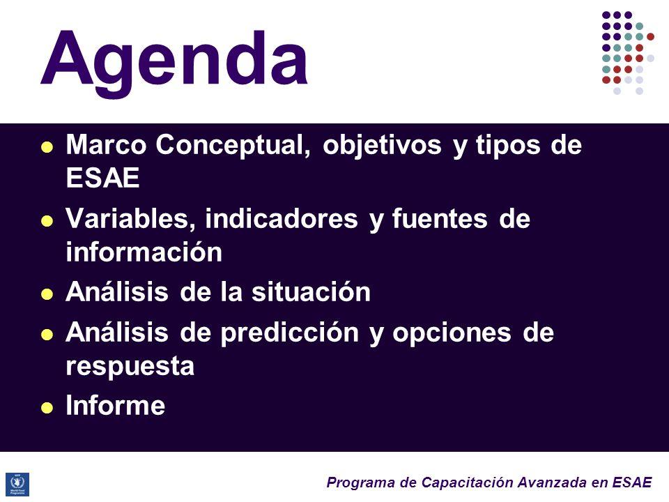 Programa de Capacitación Avanzada en ESAE Agenda Marco Conceptual, objetivos y tipos de ESAE Variables, indicadores y fuentes de información Análisis de la situación Análisis de predicción y opciones de respuesta Informe