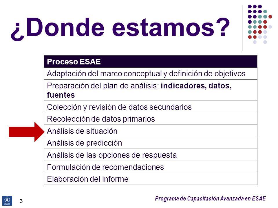 Programa de Capacitación Avanzada en ESAE ¿Donde estamos? 3 Proceso ESAE Adaptación del marco conceptual y definición de objetivos Preparación del pla