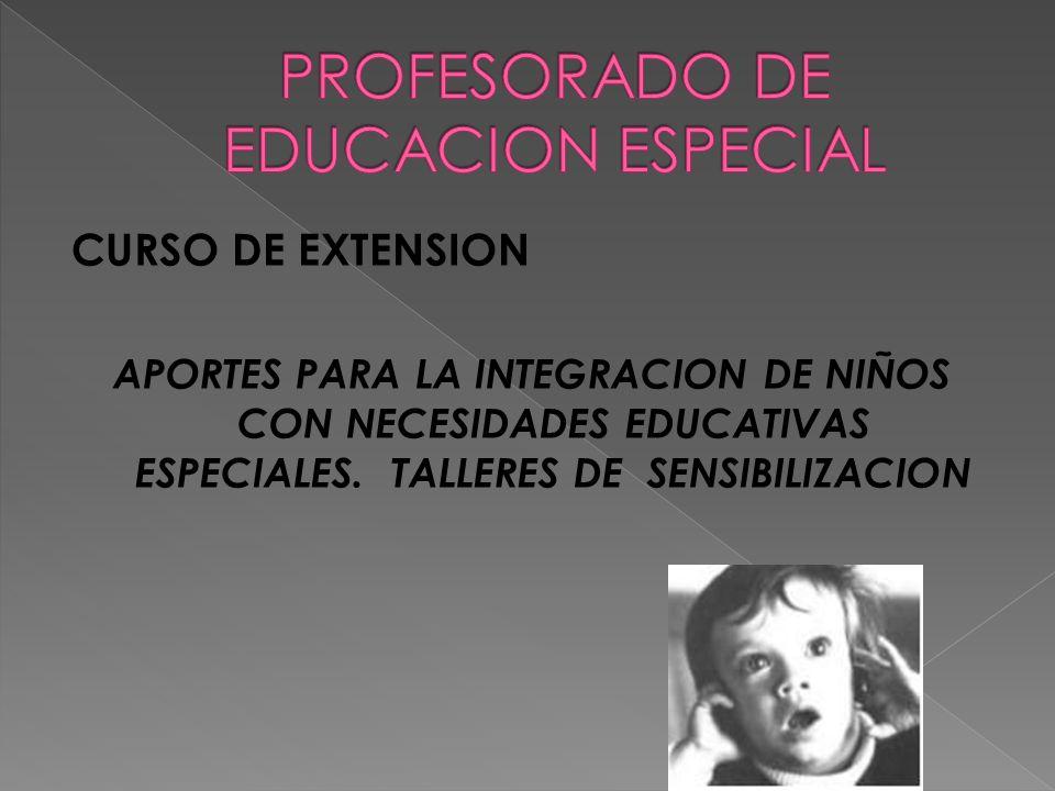 CURSO DE EXTENSION APORTES PARA LA INTEGRACION DE NIÑOS CON NECESIDADES EDUCATIVAS ESPECIALES.