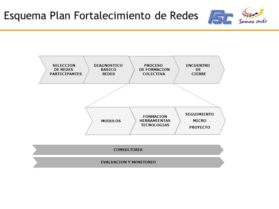 Esquema Plan Fortalecimiento de Redes SELECCION DE REDES PARTICIPANTES DIAGNOSTICO BASICO REDES PROCESO DE FORMACION COLECTIVA MODULOS FORMACION HERRAMIENTAS TECNOLOGIAS SEGUIMIENTO MICRO PROYECTO ENCUENTRO DE CIERRE CONSULTORIA EVALUACION Y MONITOREO