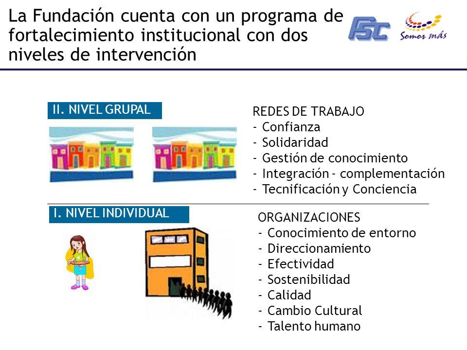 La Fundación cuenta con un programa de fortalecimiento institucional con dos niveles de intervención I.