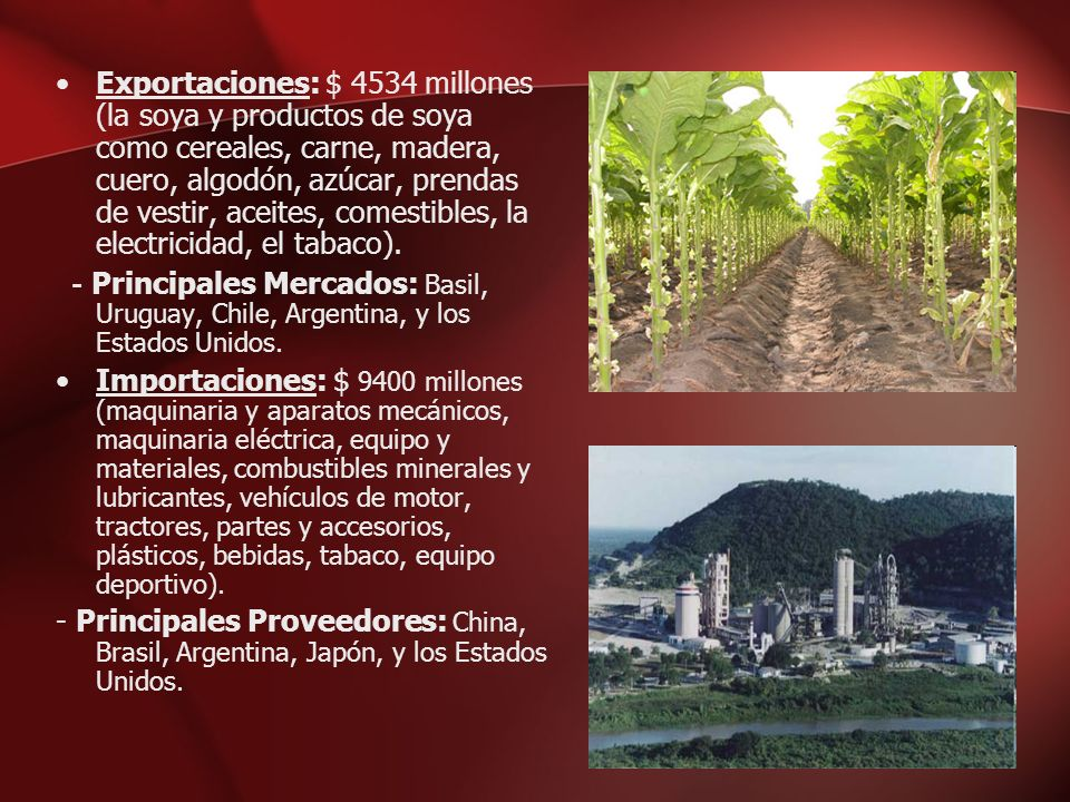 Exportaciones: $ 4534 millones (la soya y productos de soya como cereales, carne, madera, cuero, algodón, azúcar, prendas de vestir, aceites, comestib