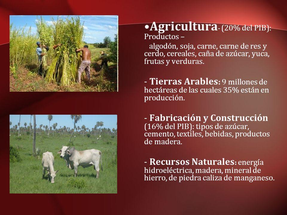 Agricultura - (20% del PIB): Productos – algodón, soja, carne, carne de res y cerdo, cereales, caña de azúcar, yuca, frutas y verduras. - Tierras Arab