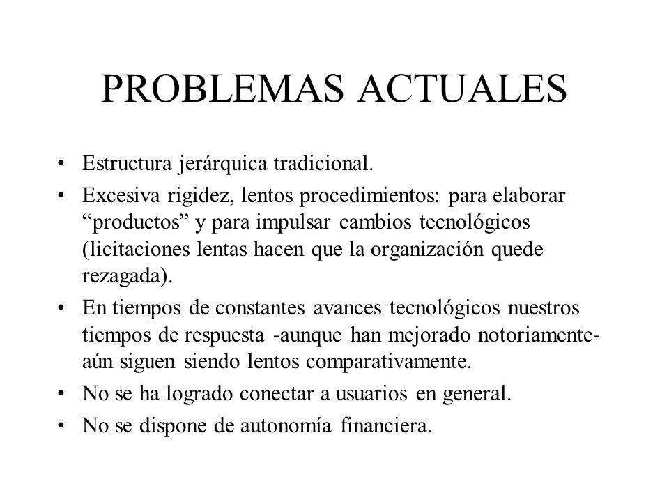 PROBLEMAS ACTUALES Estructura jerárquica tradicional. Excesiva rigidez, lentos procedimientos: para elaborar productos y para impulsar cambios tecnoló