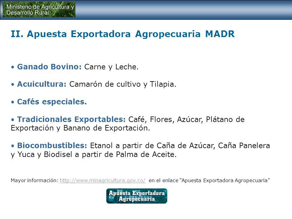II. Apuesta Exportadora Agropecuaria MADR Cultivos de tardío rendimiento: Palma de Aceite, Cacao, Caucho, Macadamia y Marañón. Frutas: Pitahaya, Mango