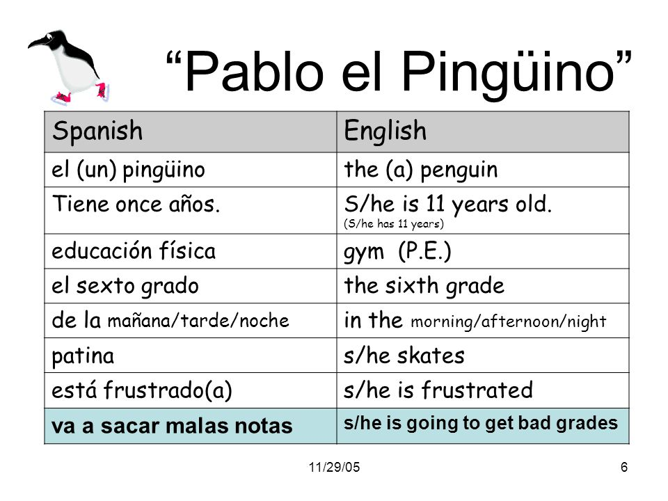 11/29/056 Pablo el Pingüino SpanishEnglish el (un) pingüinothe (a) penguin Tiene once años.S/he is 11 years old. (S/he has 11 years) educación físicag
