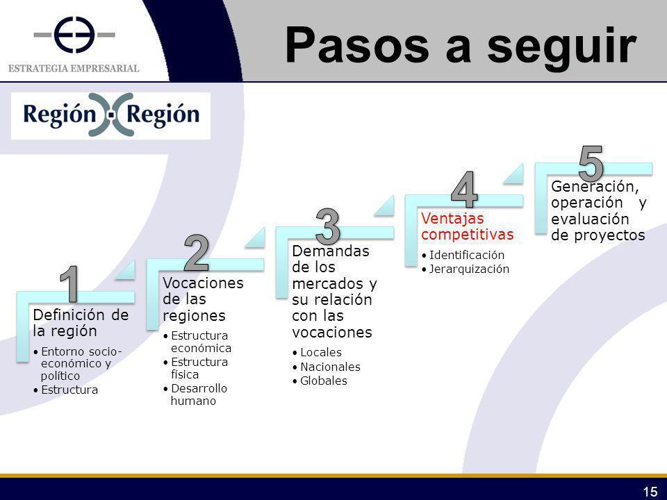 15 Pasos a seguir Definición de la región Entorno socio- económico y político Estructura Vocaciones de las regiones Estructura económica Estructura fí