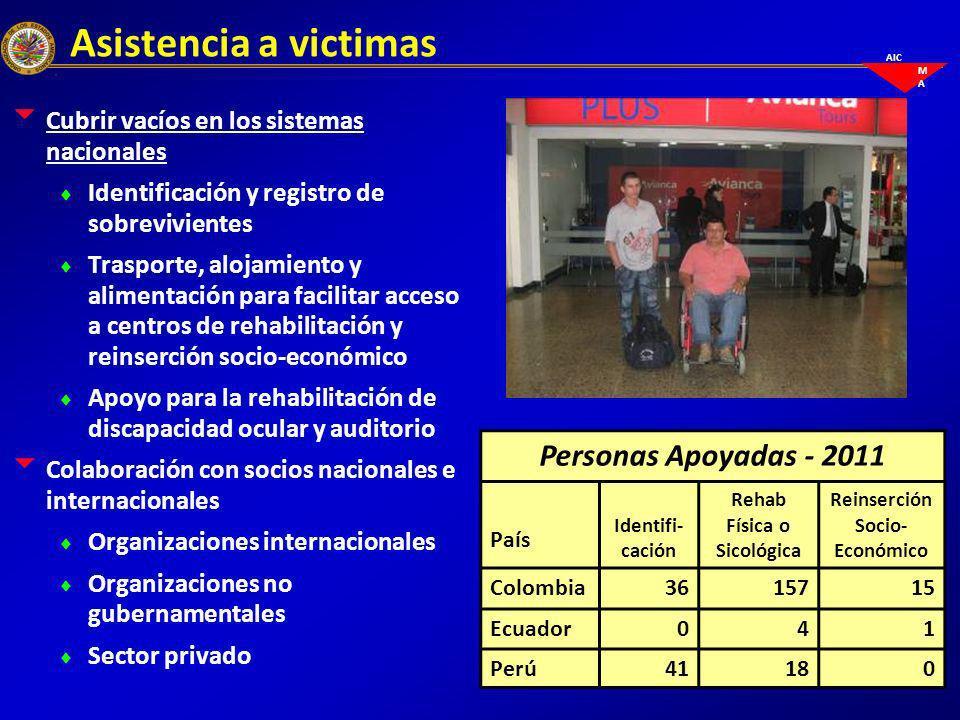 Asistencia a victimas Cubrir vacíos en los sistemas nacionales Identificación y registro de sobrevivientes Trasporte, alojamiento y alimentación para