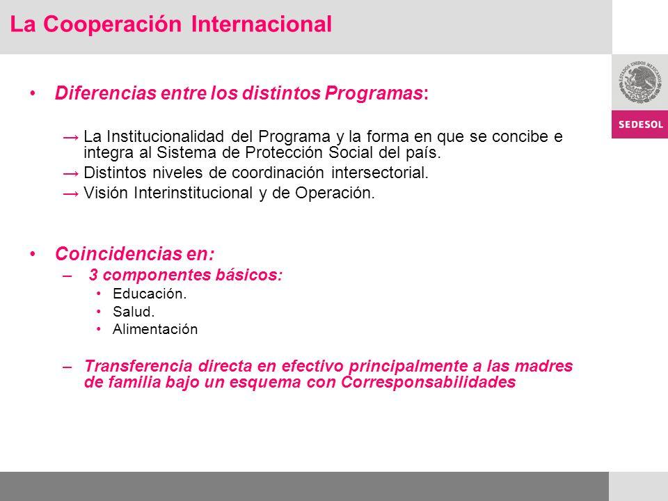 Diferencias entre los distintos Programas: La Institucionalidad del Programa y la forma en que se concibe e integra al Sistema de Protección Social del país.