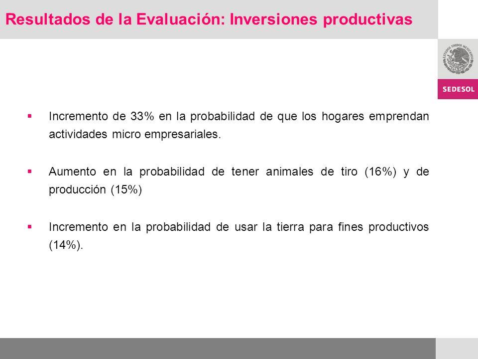 Incremento de 33% en la probabilidad de que los hogares emprendan actividades micro empresariales.