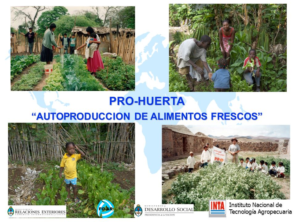 Instituto Nacional de Tecnología Agropecuaria PRO-HUERTA AUTOPRODUCCION DE ALIMENTOS FRESCOS