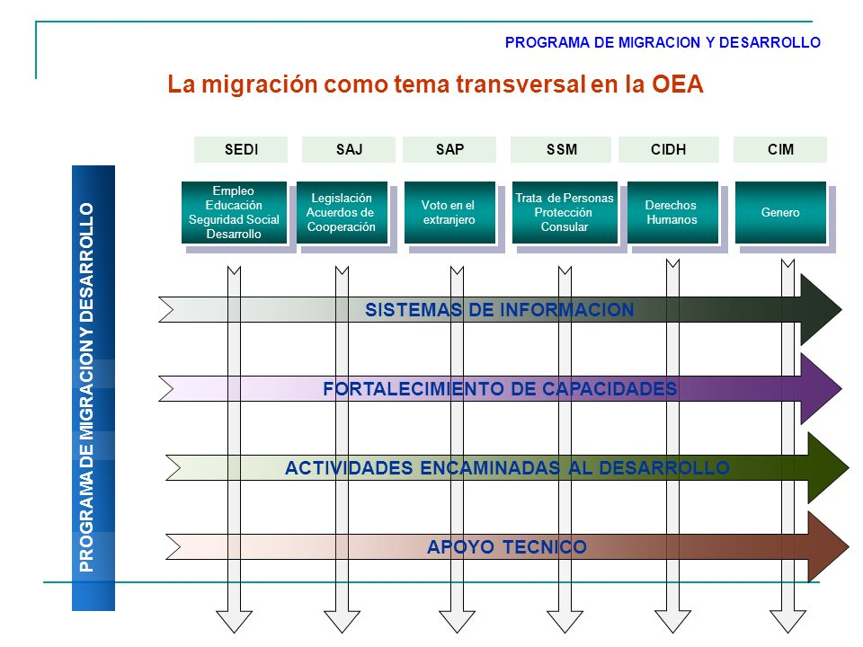 Comisión Especial de Asuntos Migratorios ANTECEDENTES El 2 de mayo de 2007, el Consejo Permanente convoca a una sesión extraordinaria para analizar y discutir los flujos de migración humana y su impacto en los Estados Miembros.