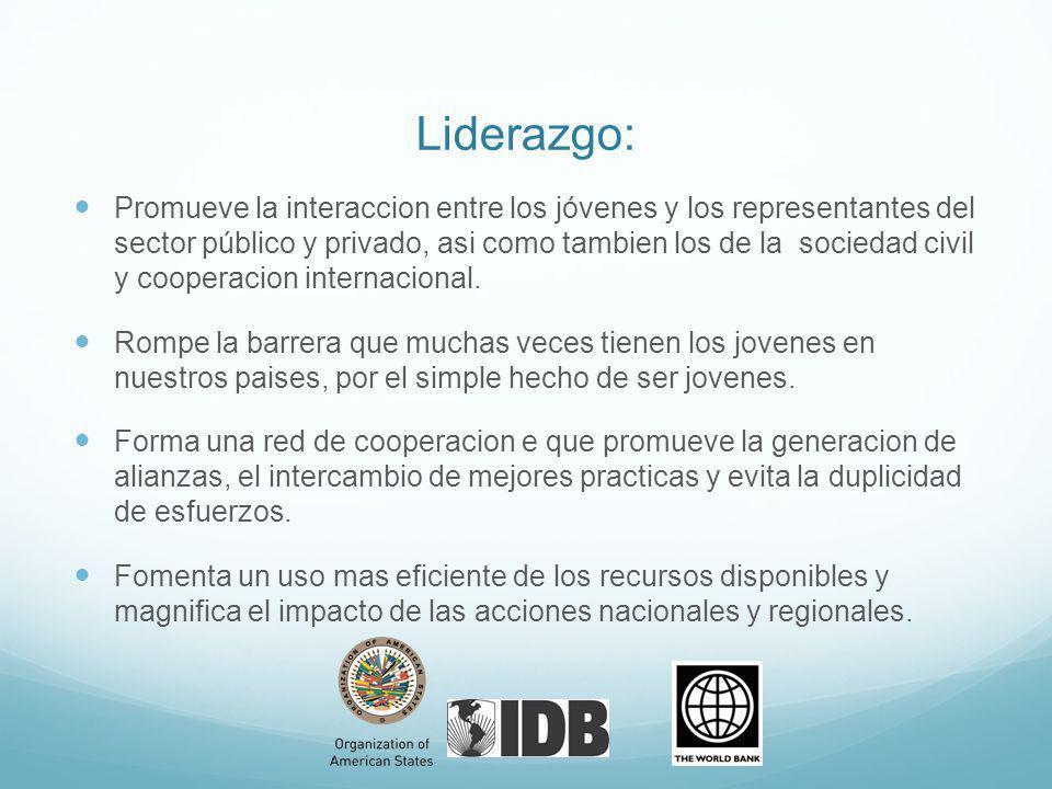 Liderazgo: Promueve la interaccion entre los jóvenes y los representantes del sector público y privado, asi como tambien los de la sociedad civil y cooperacion internacional.