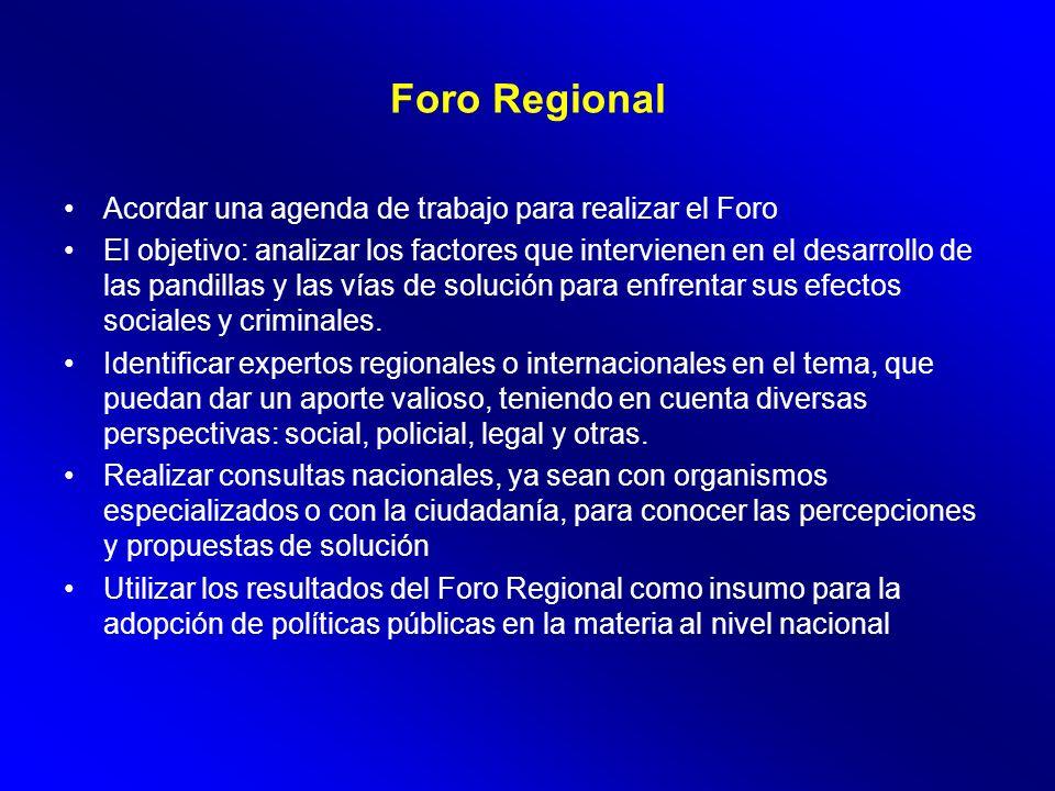 Foro Regional Acordar una agenda de trabajo para realizar el Foro El objetivo: analizar los factores que intervienen en el desarrollo de las pandillas y las vías de solución para enfrentar sus efectos sociales y criminales.