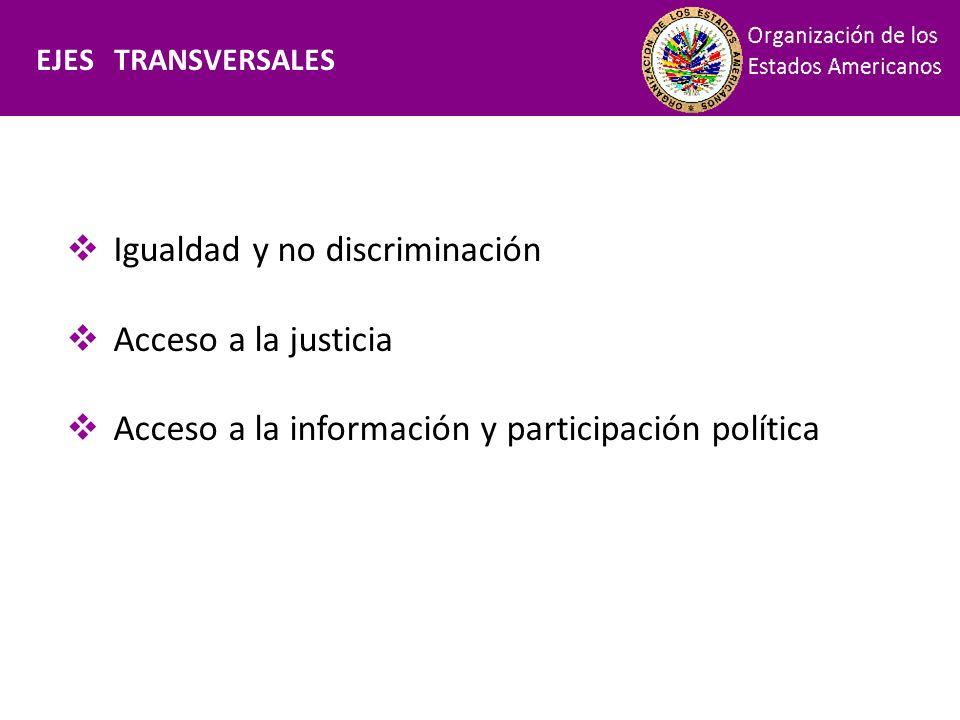 Financiamiento EJES TRANSVERSALES Igualdad y no discriminación Acceso a la justicia Acceso a la información y participación política