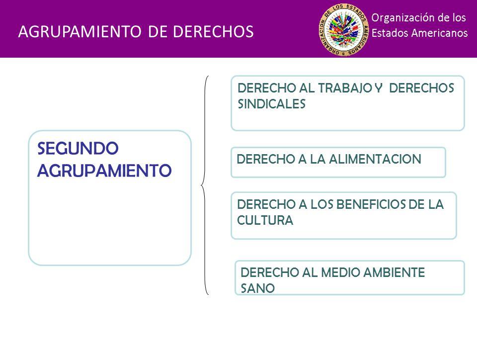 Financiamiento AGRUPAMIENTO DE DERECHOS SEGUNDO AGRUPAMIENTO DERECHO AL TRABAJO Y DERECHOS SINDICALES DERECHO A LA ALIMENTACION DERECHO A LOS BENEFICI